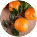 Extractul din fructe de portocală amară