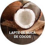 LAPTE DE NUCĂ DE COCOS