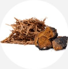Extract de ciaga + extract de lapacio