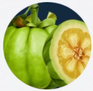 Extractul din fructe de Garcinia Cambogia