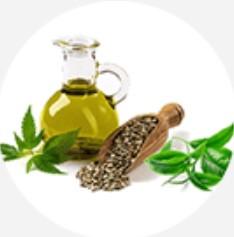 Ulei de cânepă + ulei de arbore de ceai