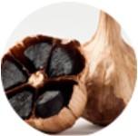Usturoi negru