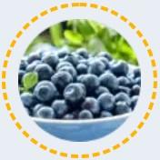 Fructe de afine