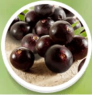 Fructele de padure Acai